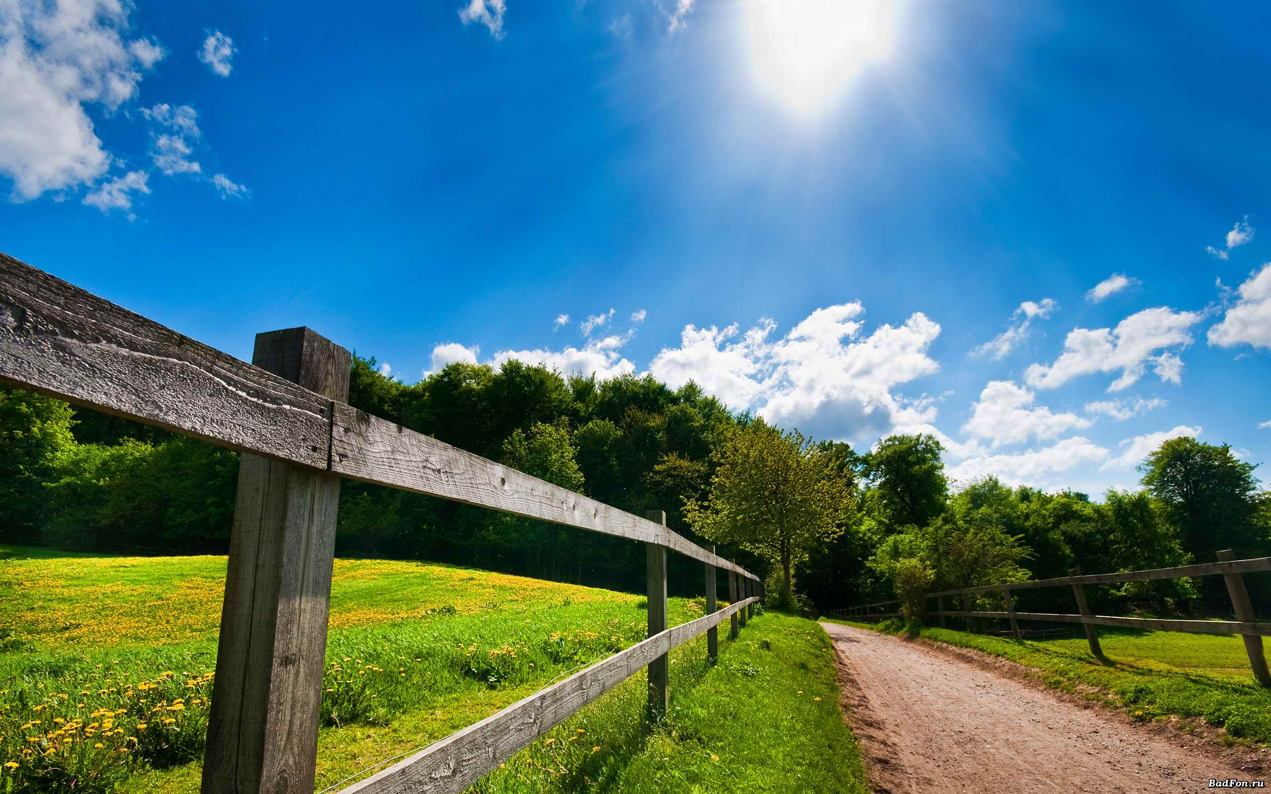 Sunny Day Backgrounds Wallpaper Cave