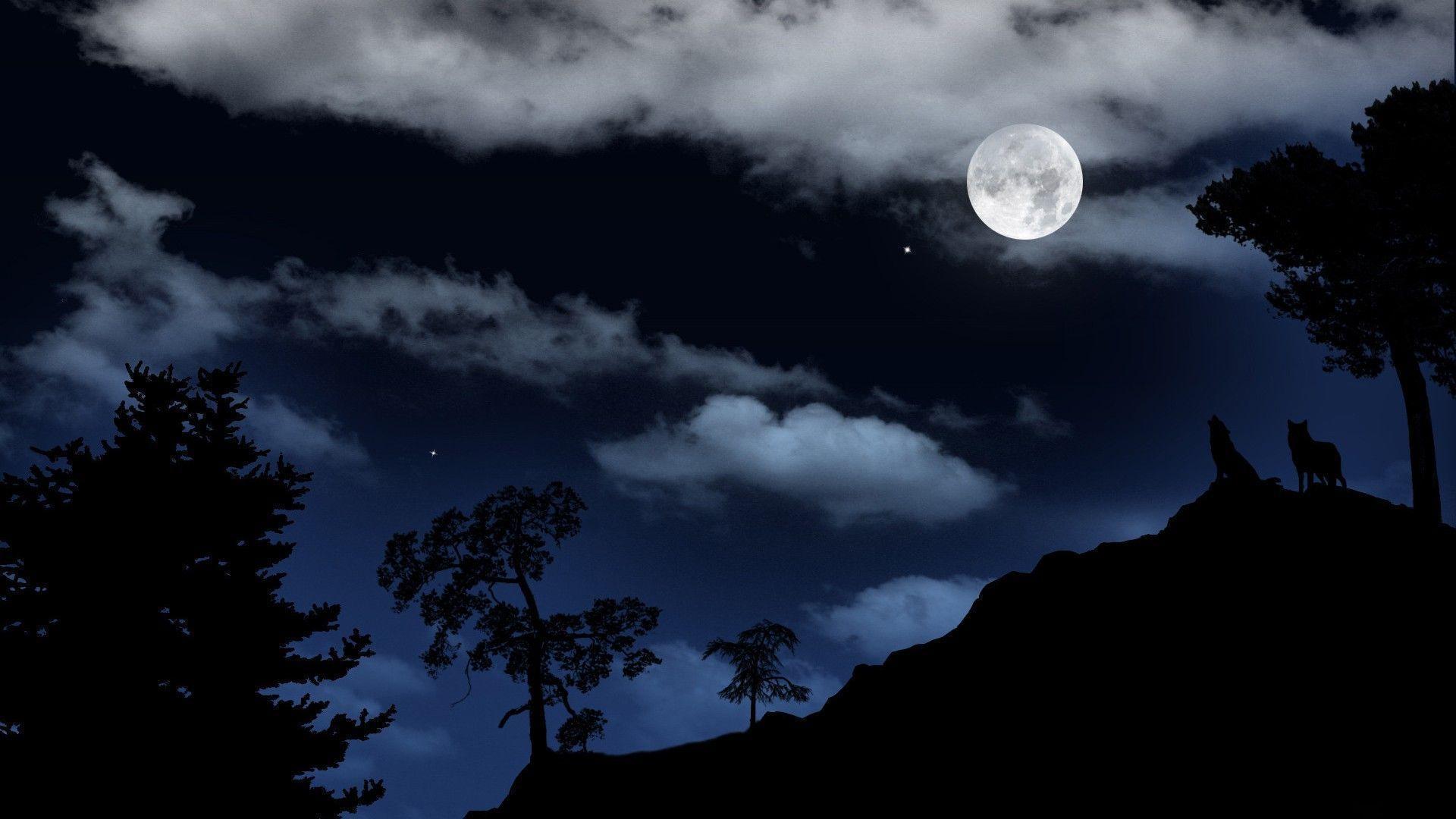 Wolves Under The Moonlight Wallpaper