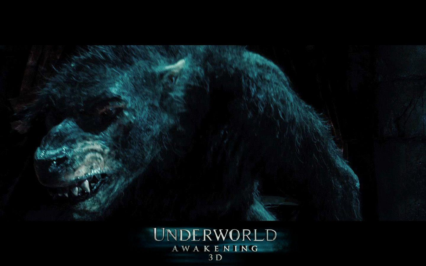 underworld werewolf wallpapers - wallpaper cave