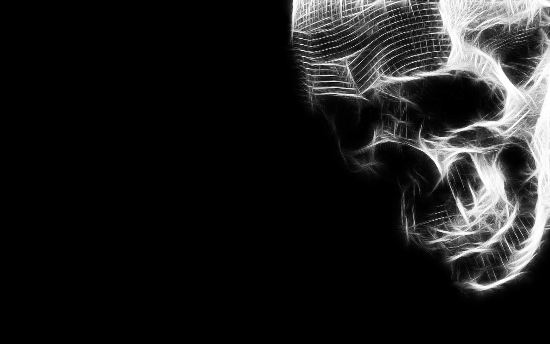 Cool HD Skull Black And White 3368 1920x1200px - HD Wallpaper