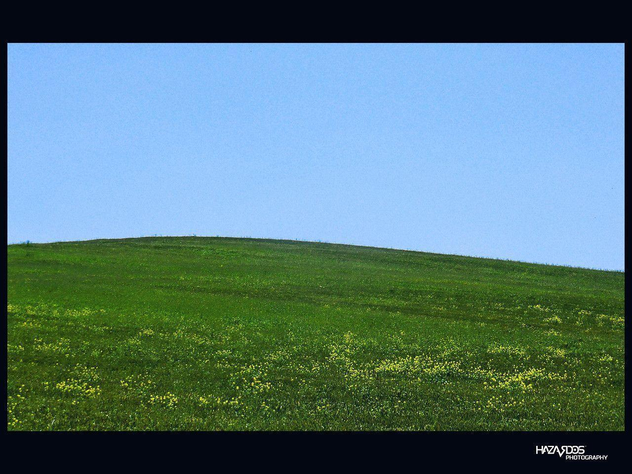 windows xp wallpapers bliss wallpaper cave