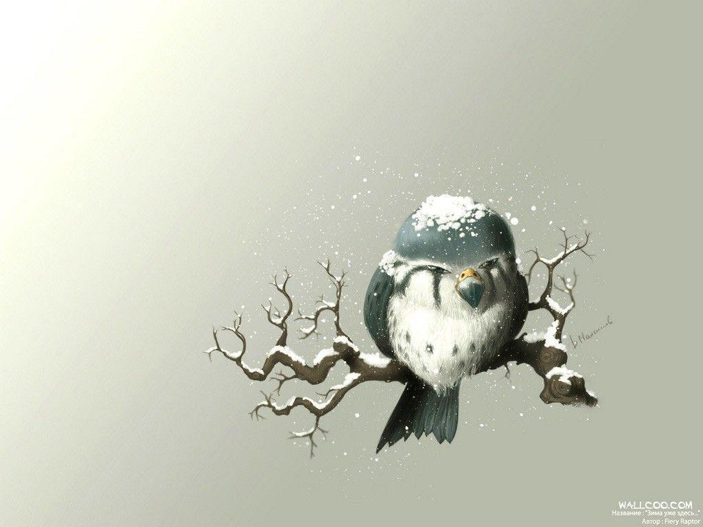 Free Owl Wallpapers - Wallpaper Cave