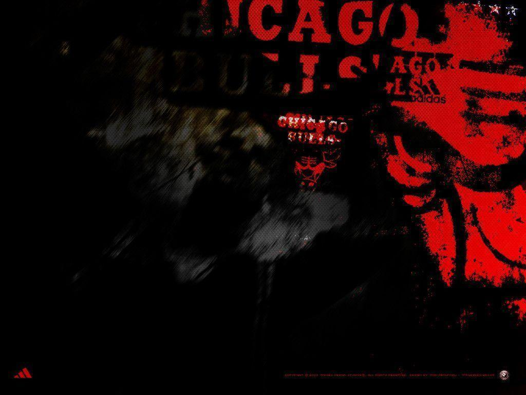 chicago bulls wallpapers wallpaper cave