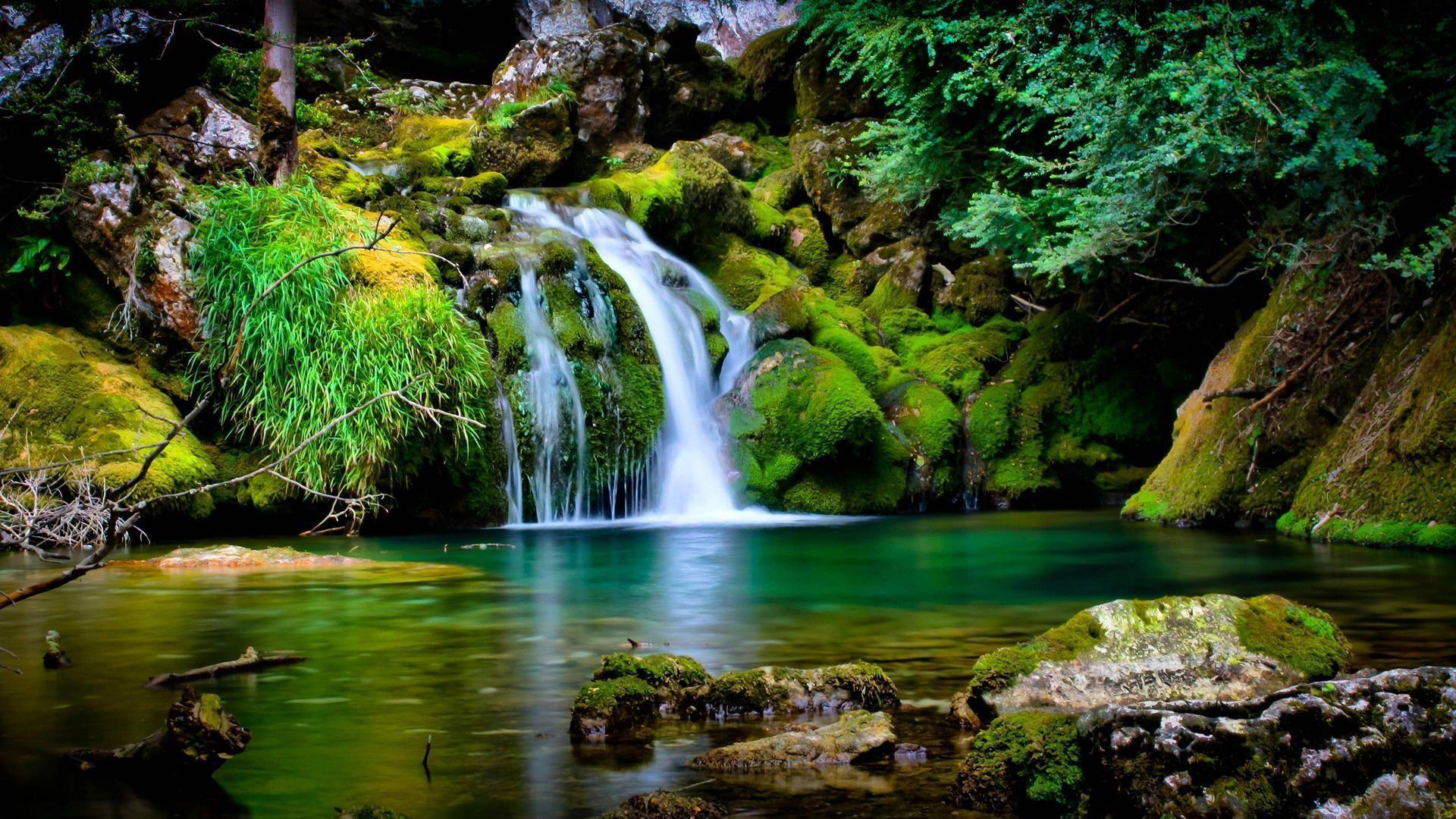 top nature wallpapers: Best Nature Wallpapers