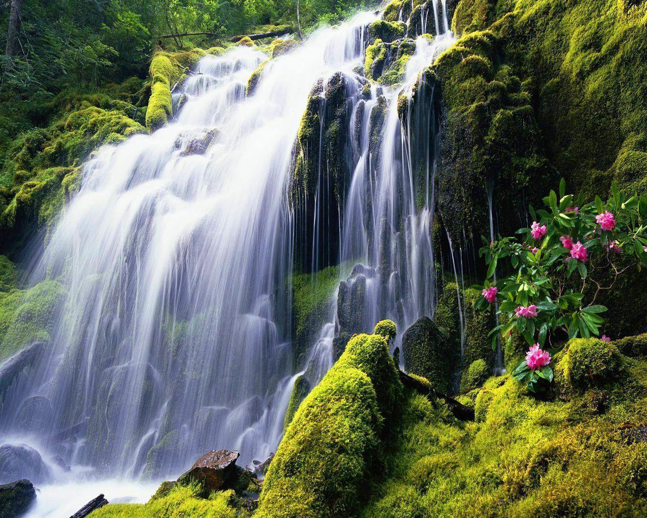 free waterfall wallpapers - photo #18