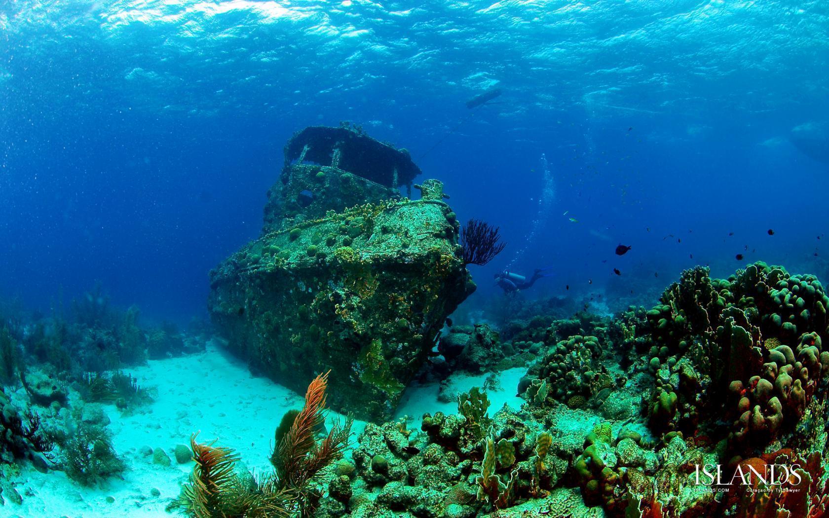 scuba diving wallpaper wallpapers - photo #13