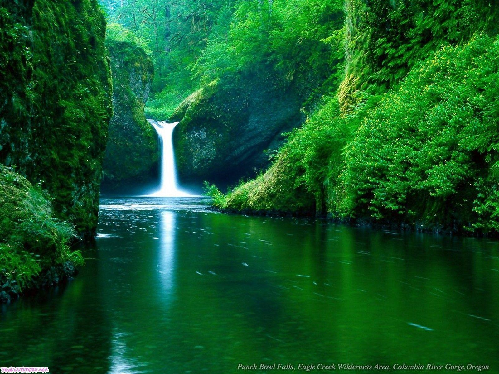 Download attractive and beautiful waterfall wallpapers