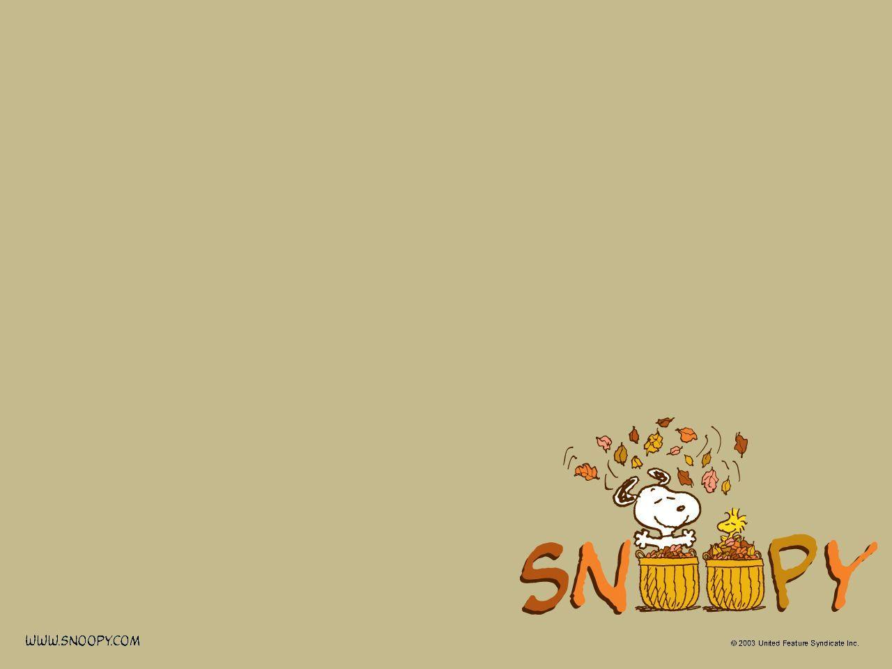 Download Cartoons Charlie Brown Thanksgiving Wallpapers 1280x960