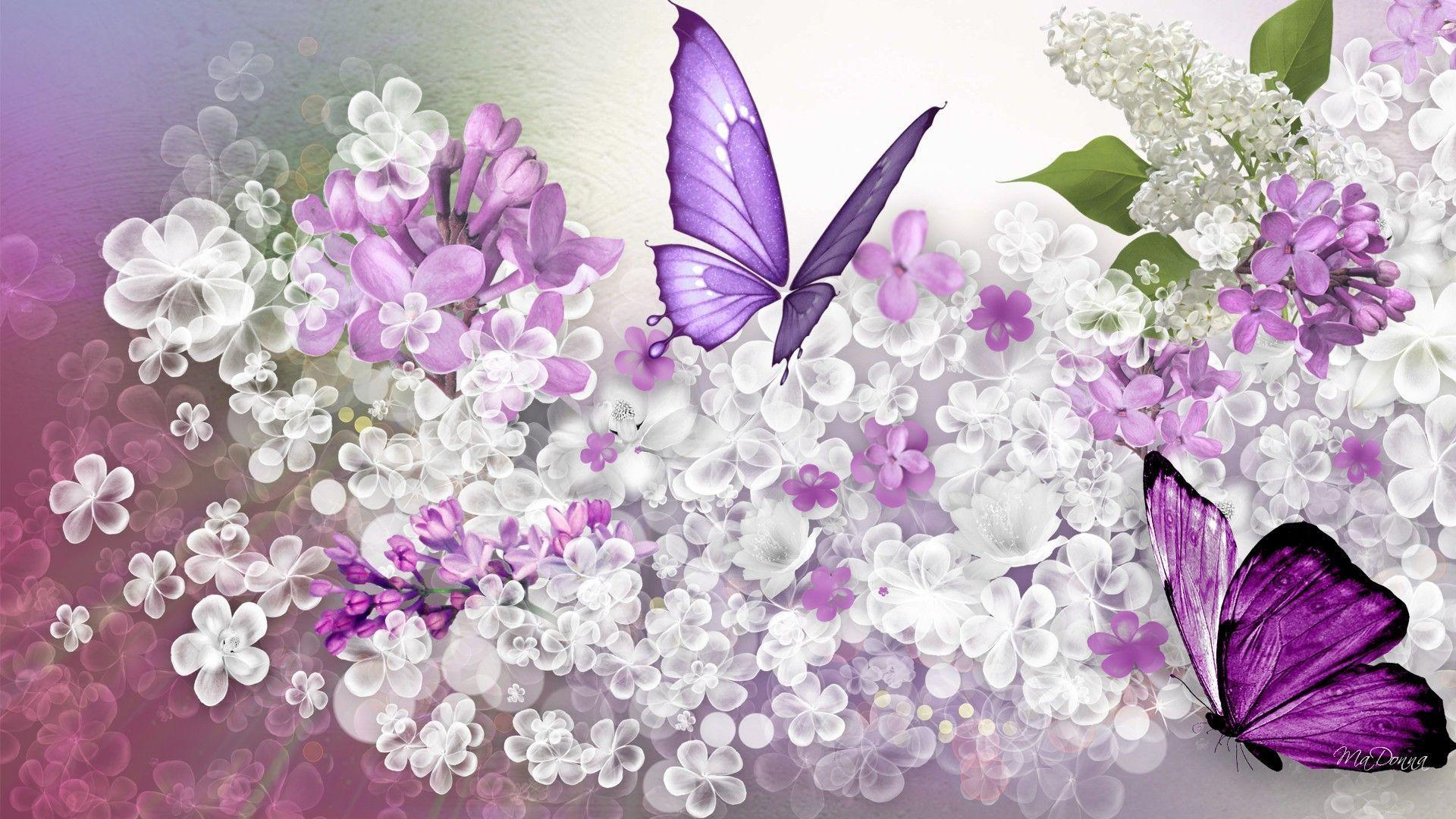 Lilac wallpapers wallpaper cave for Lilac butterfly wallpaper