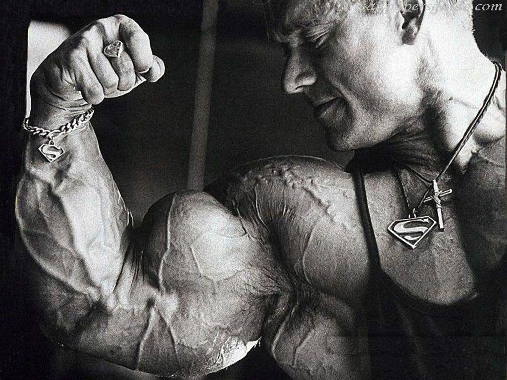 Bodybuilder Wallpapers