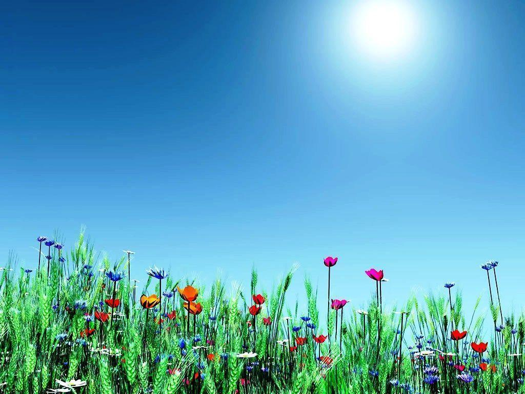 Free Spring Backgrounds Desktop  Wallpaper Cave