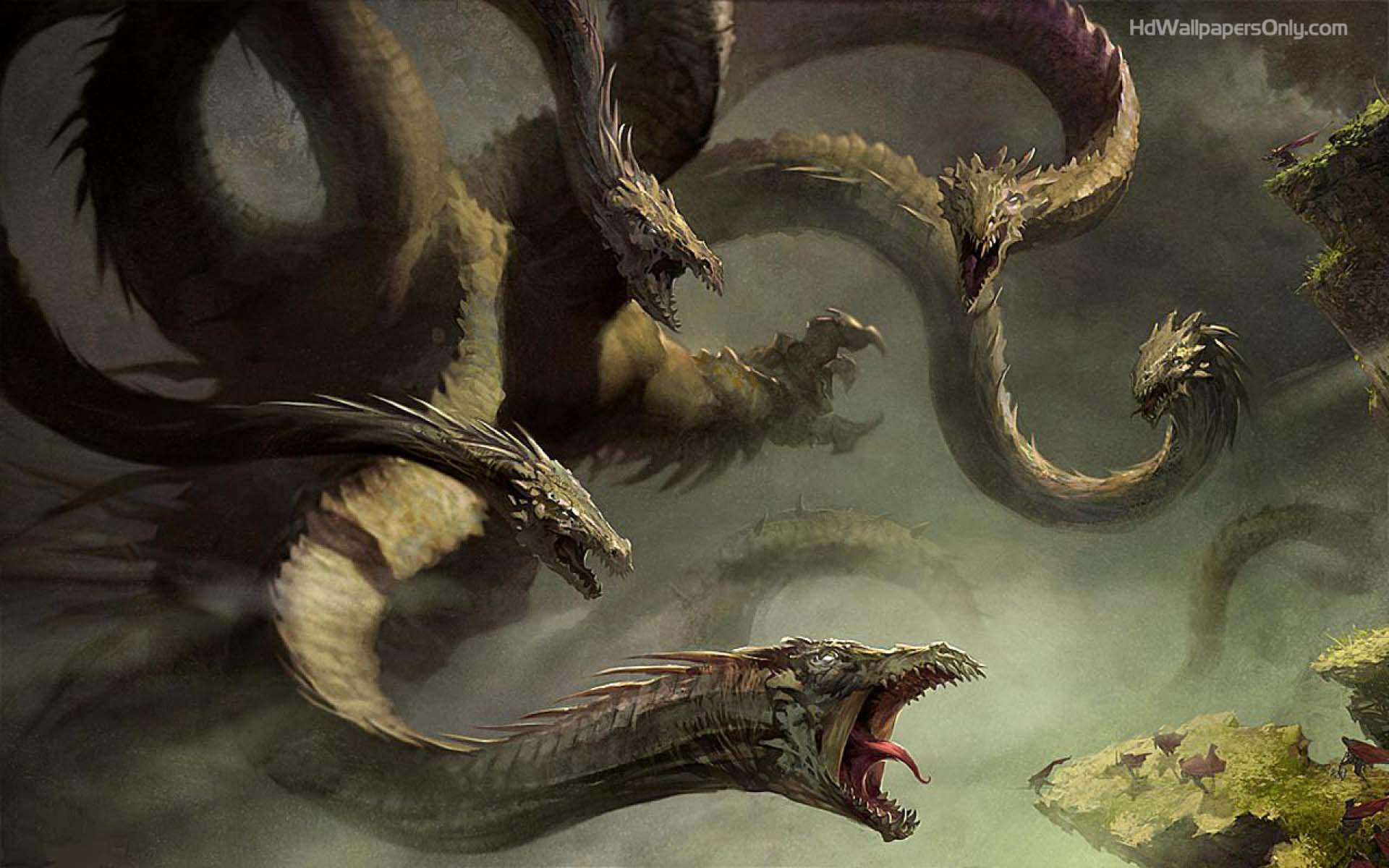 dragons wallpapers hd wallpaper cave