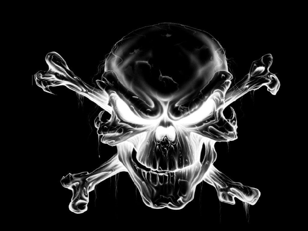 Skull And Bones Wallpaper: Harley-Davidson Logo Wallpapers