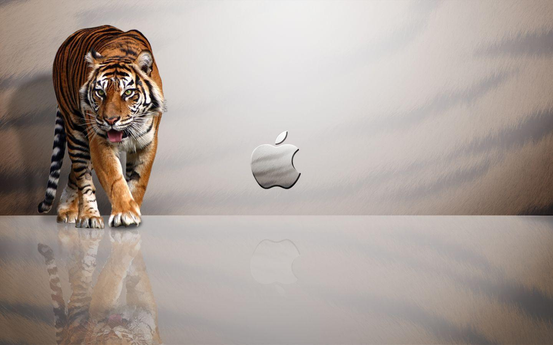 Mac Desktop Backgrounds - Wallpaper Cave