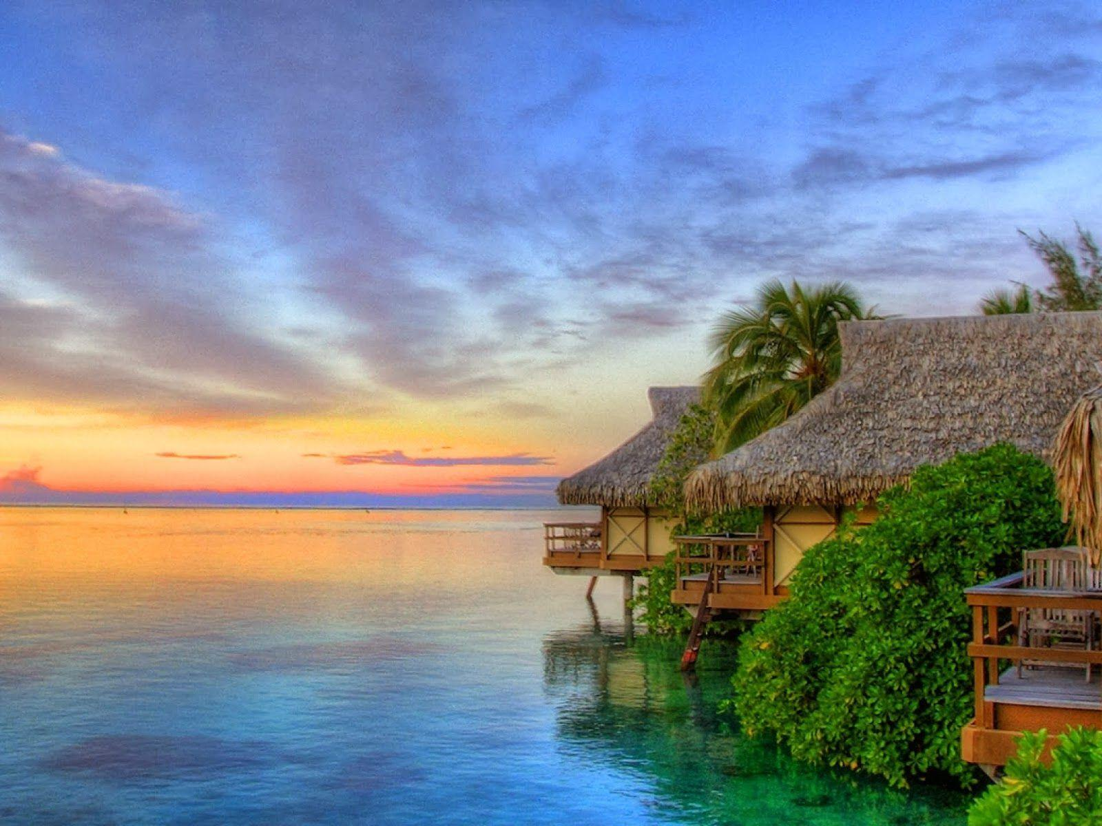 Exotic Beach Wallpaper 4992 HD Wallpapers | wallpaperenew.