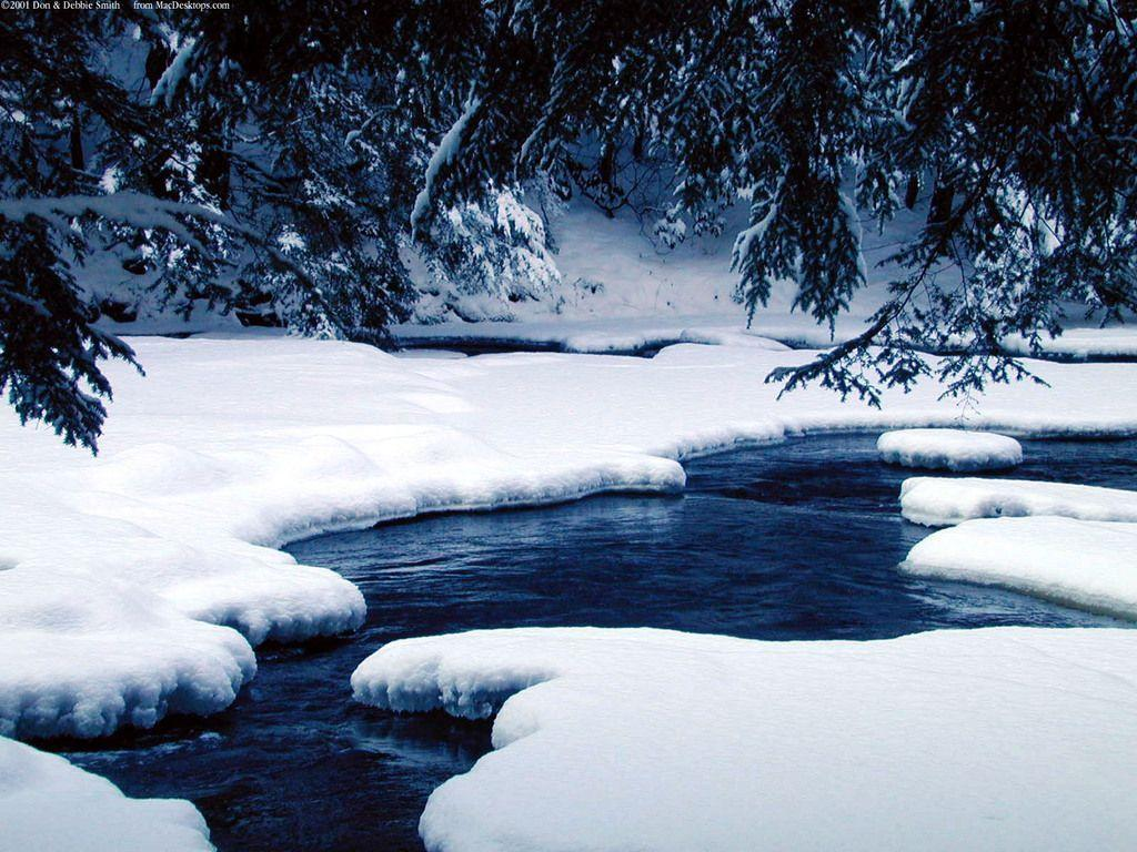 Winter Wonderland Wallpapers - Wallpaper Cave