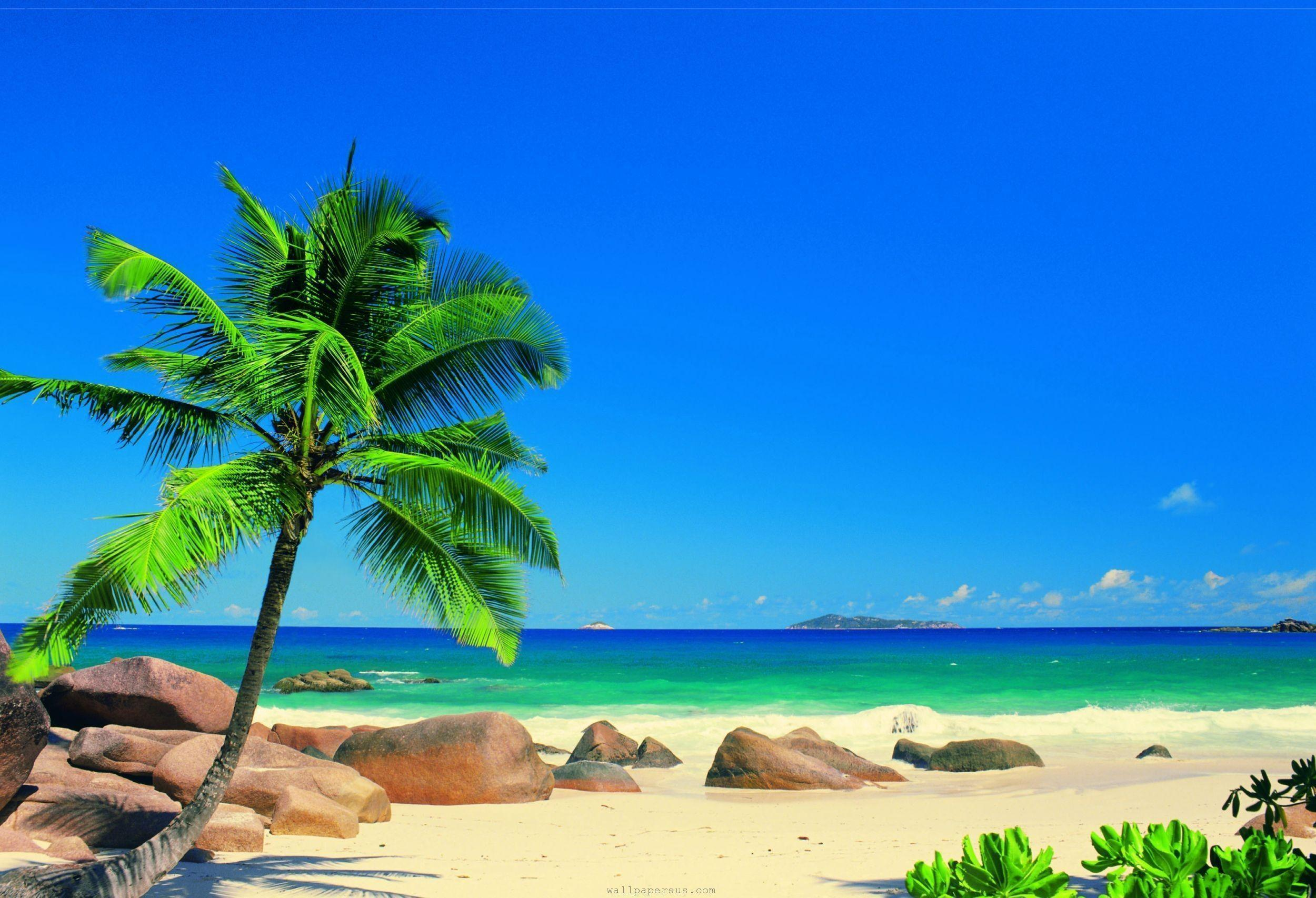 Exotic Beaches Wallpapers Hd Background 9 HD Wallpapers | aladdino.