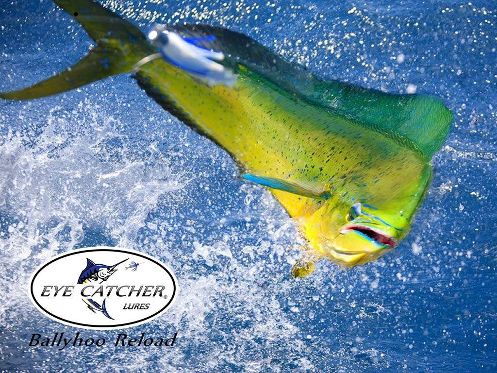 fishing lure wallpaper - photo #11