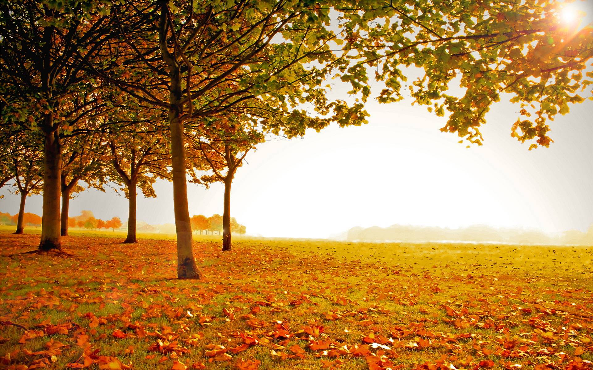landscape autumn hd wallpaper -#main