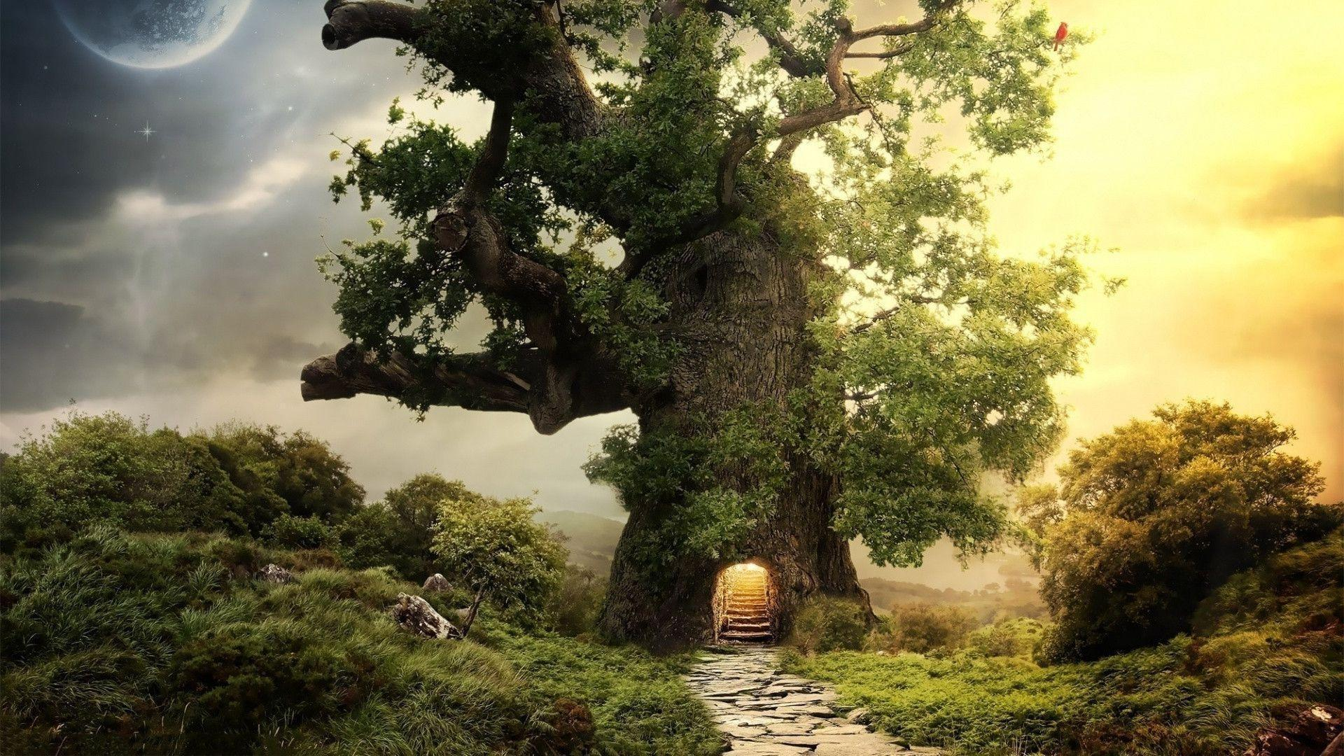 1920x1080 Fantasy house tree Wallpapers