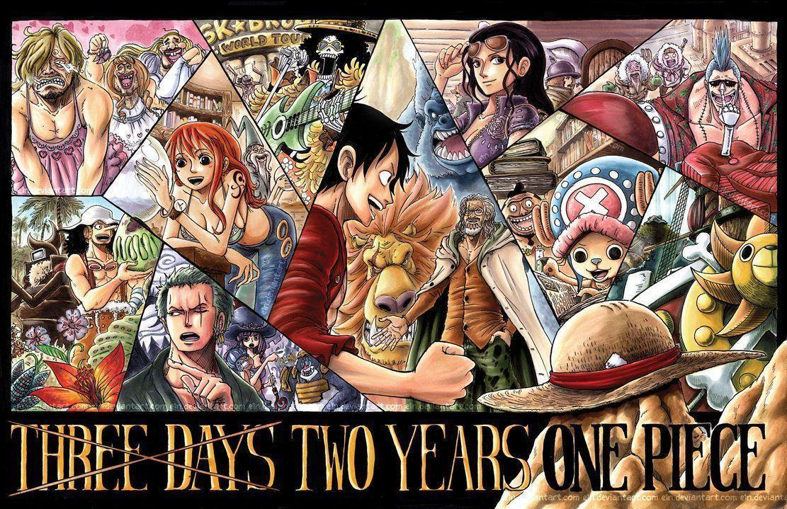Wallpapers For > One Piece Crew Wallpapers Timeskip