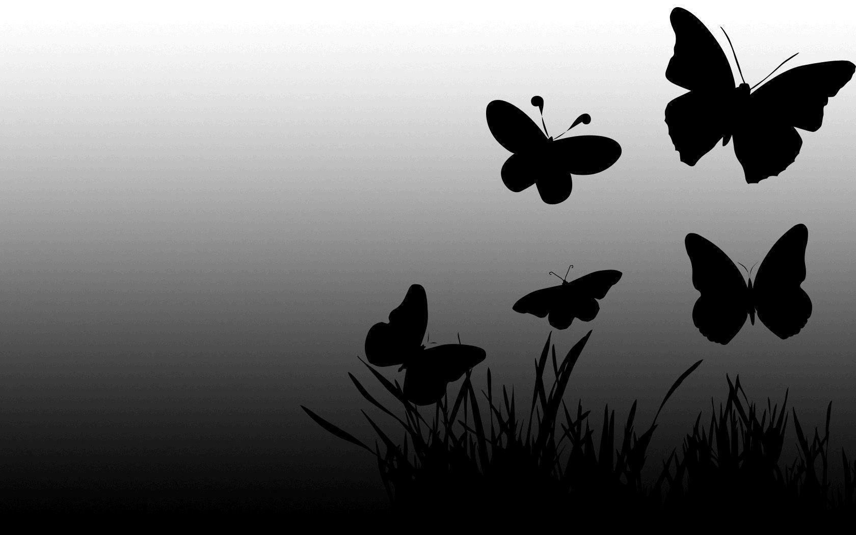 Butterfly wallpaper black and white