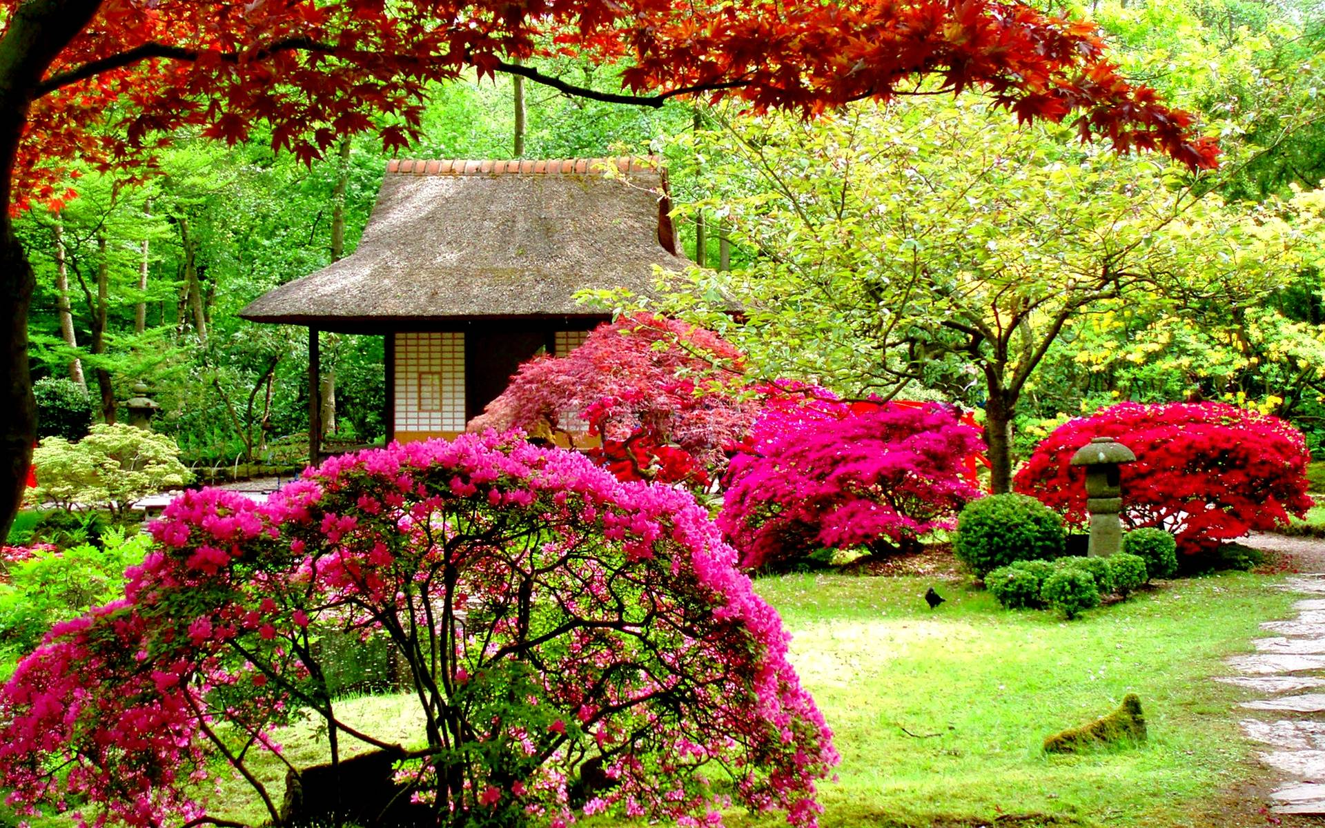 Beautiful garden wallpapers wallpaper cave for Beautiful garden images hd