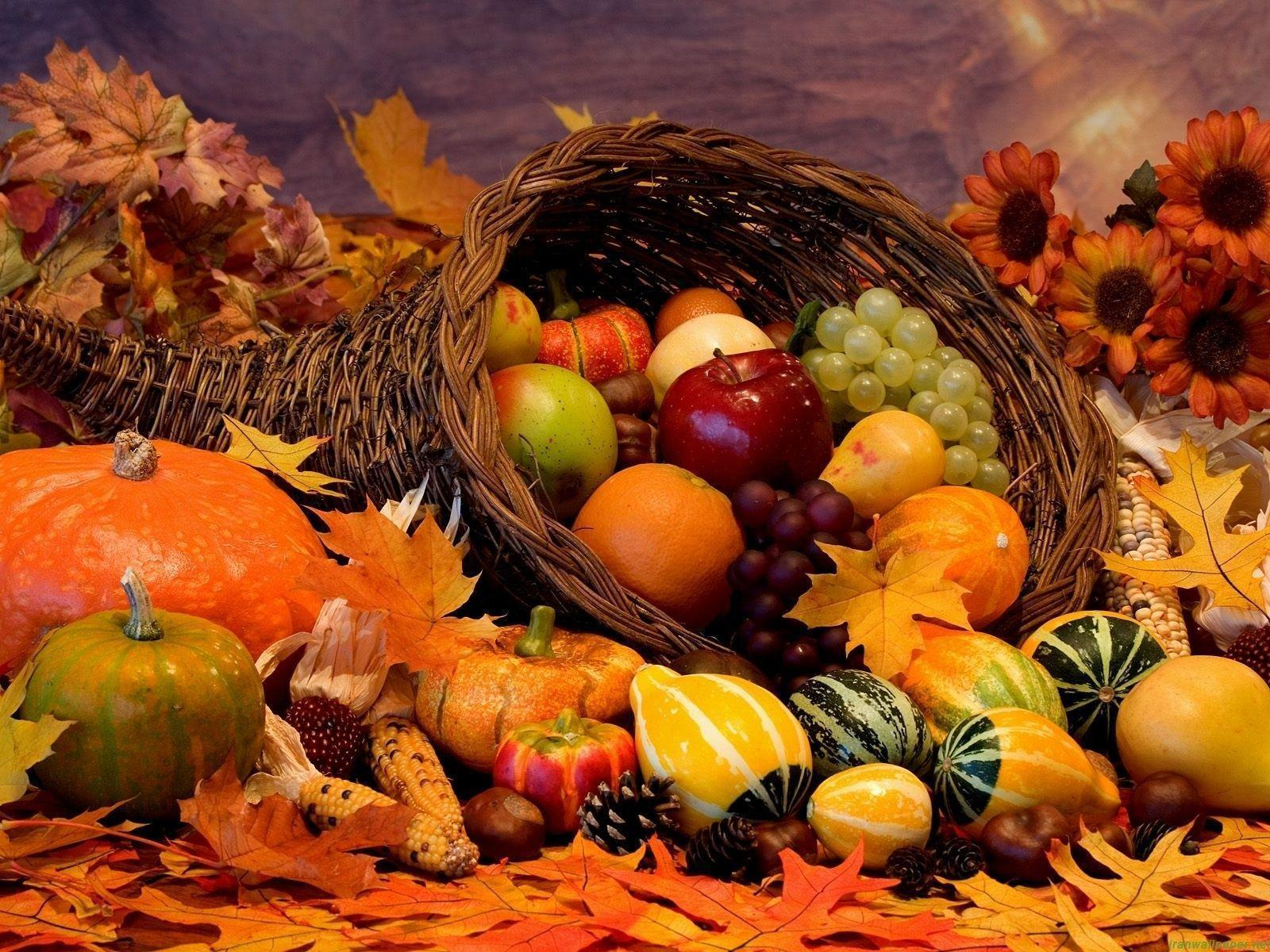 free thanksgiving desktop wallpapers wallpapers idol