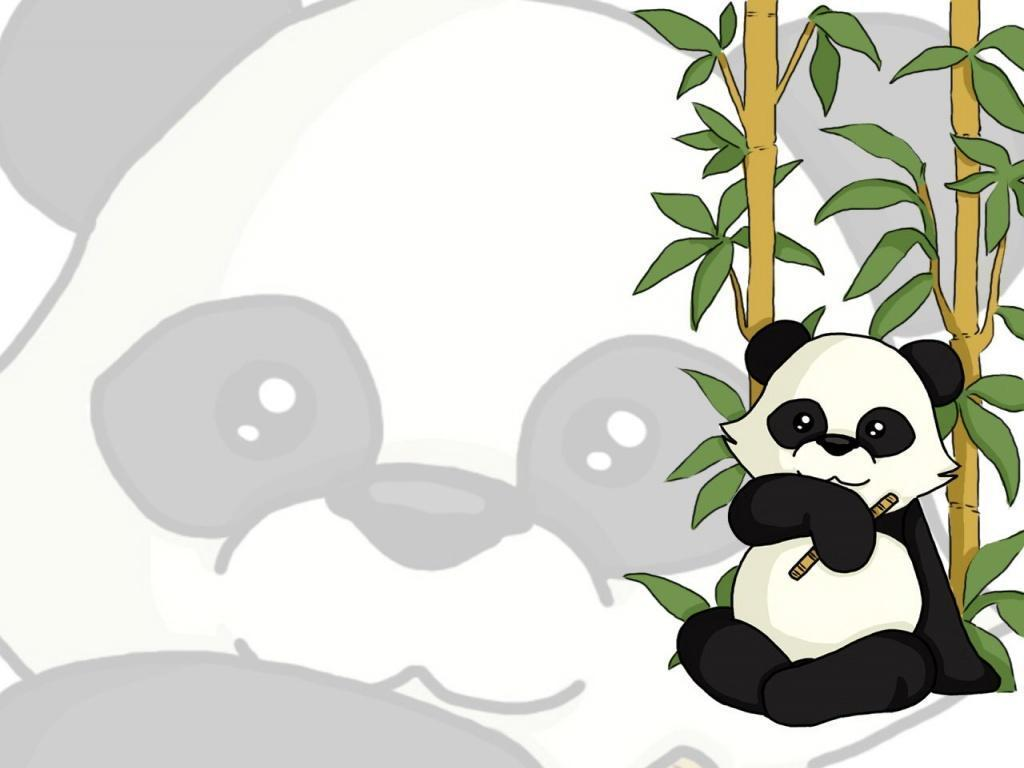 panda bear wallpaper - DriverLayer Search Engine