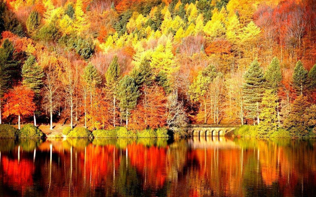 fall landscape wallpaper images pictures becuo