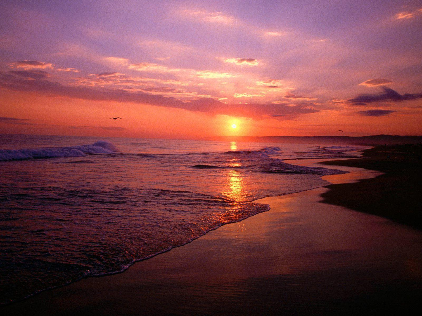 beach sunrise tumblr hd - photo #18