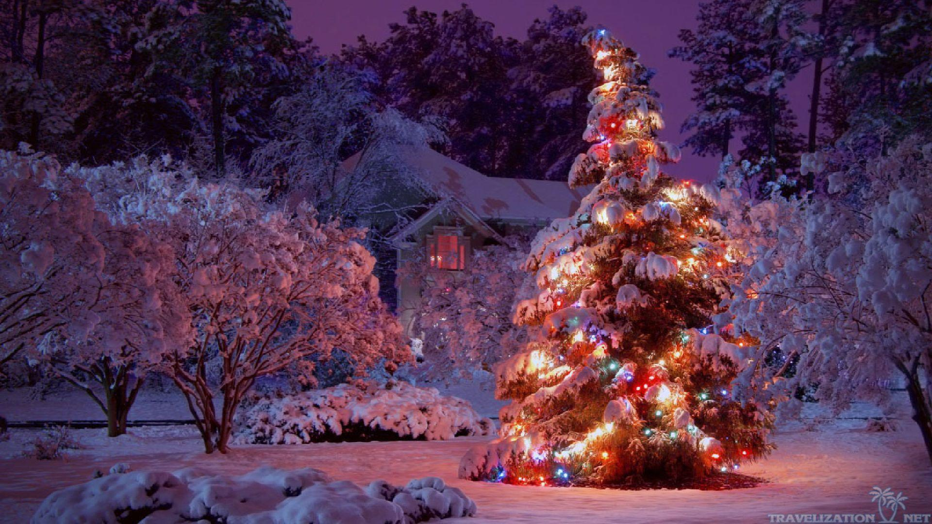 christmas winter backgrounds