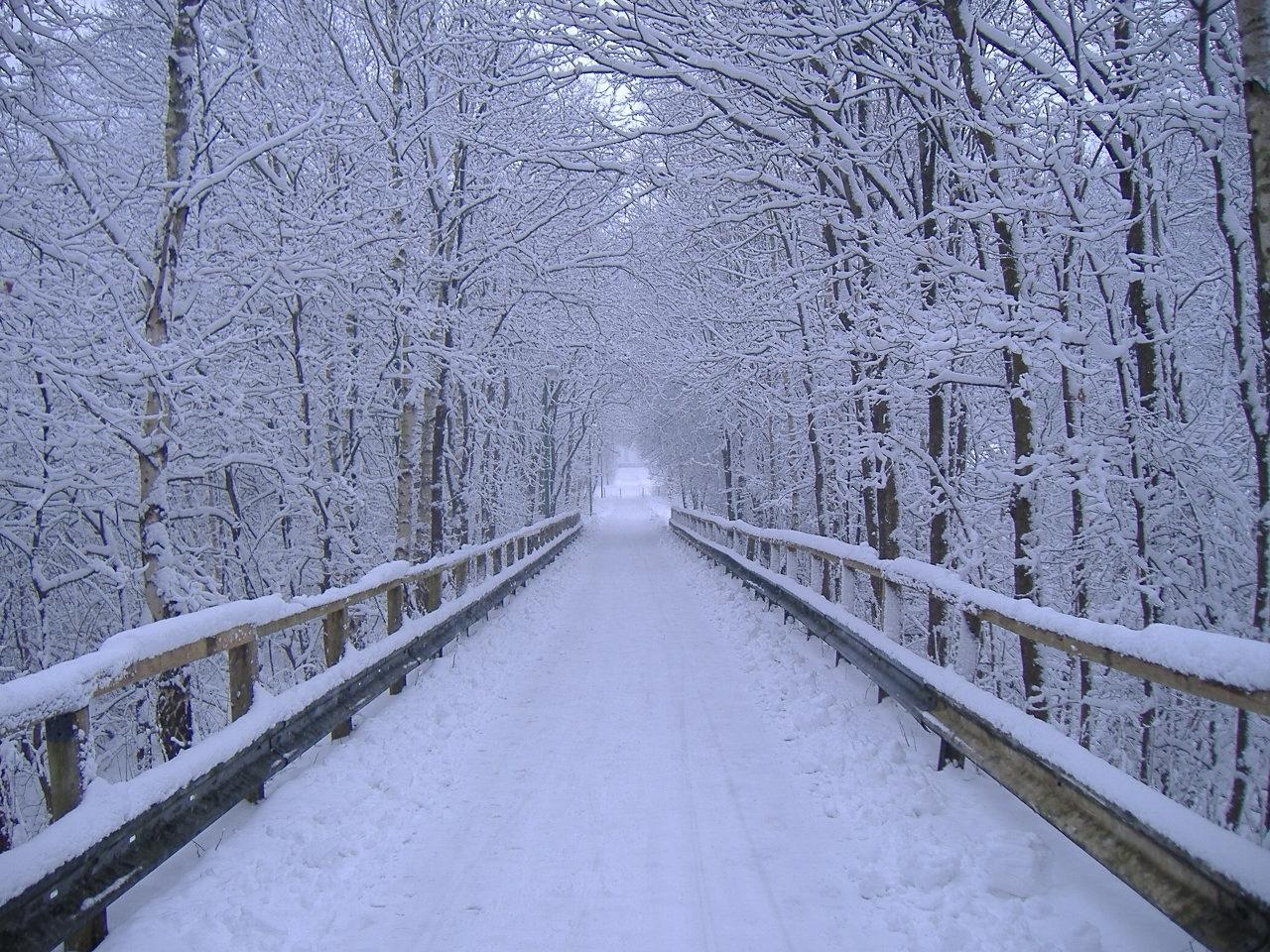 google winter screensavers and wallpaper - photo #47