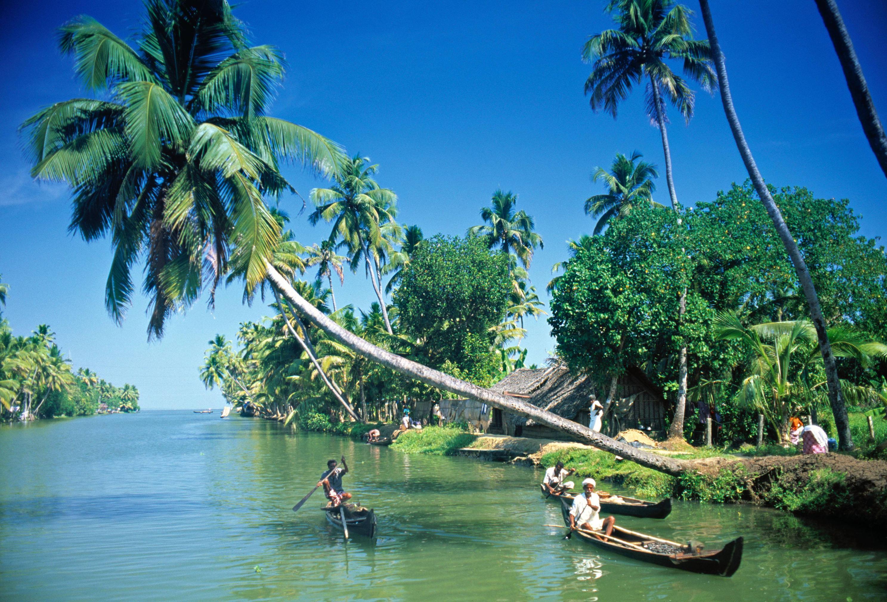 Керала индия отзывы туристов самостоятельно