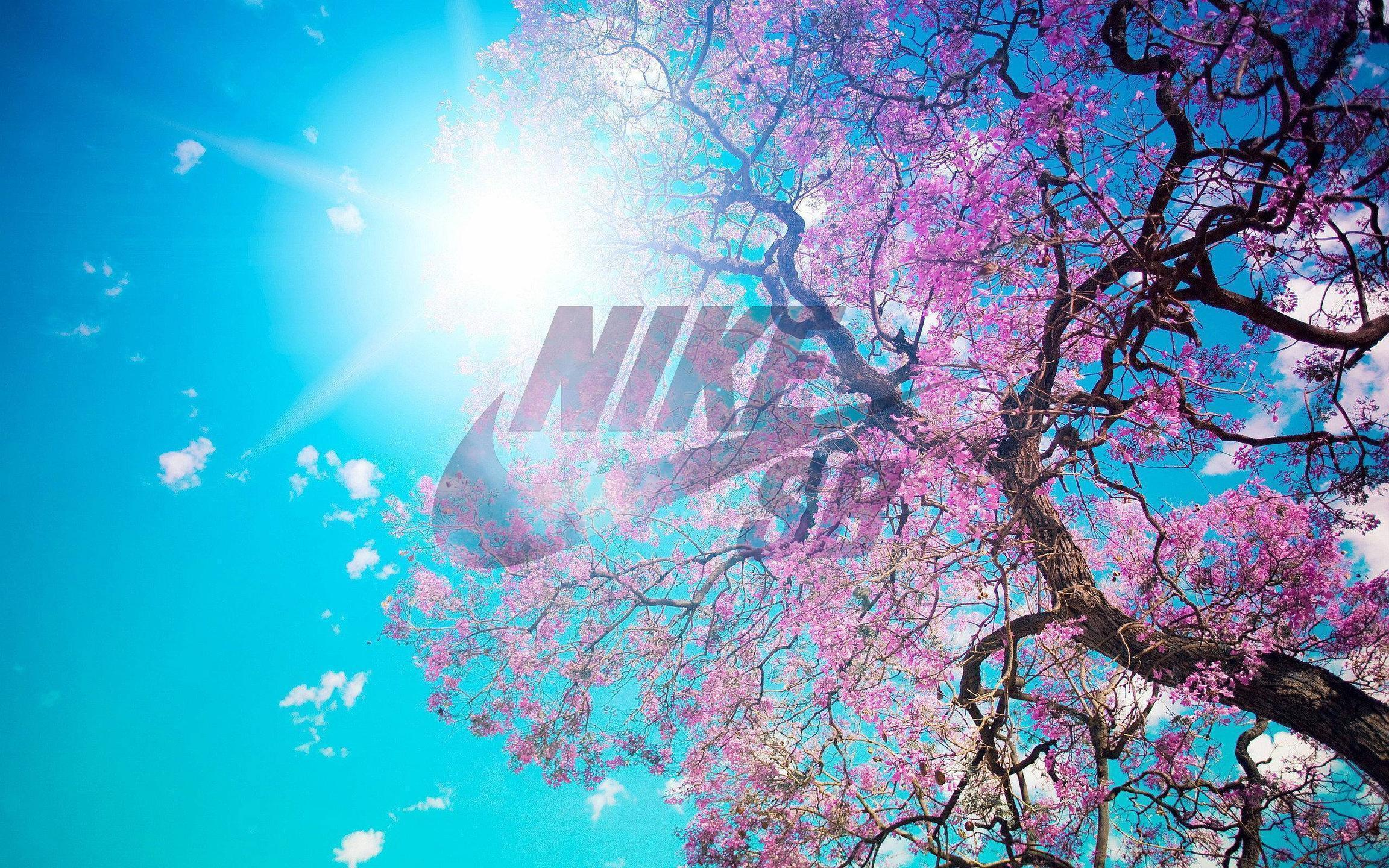 Nike Laptop Wallpaper Tumblr: Nike SB Logo Wallpapers
