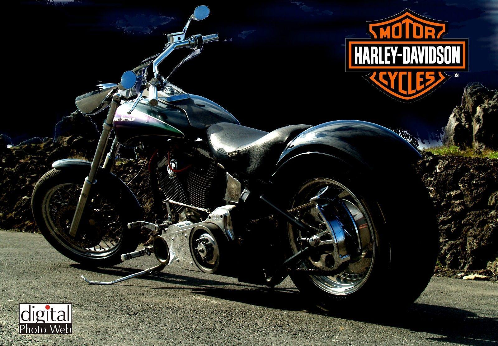 Wallpapers For > Harley Davidson Bike Wallpapers