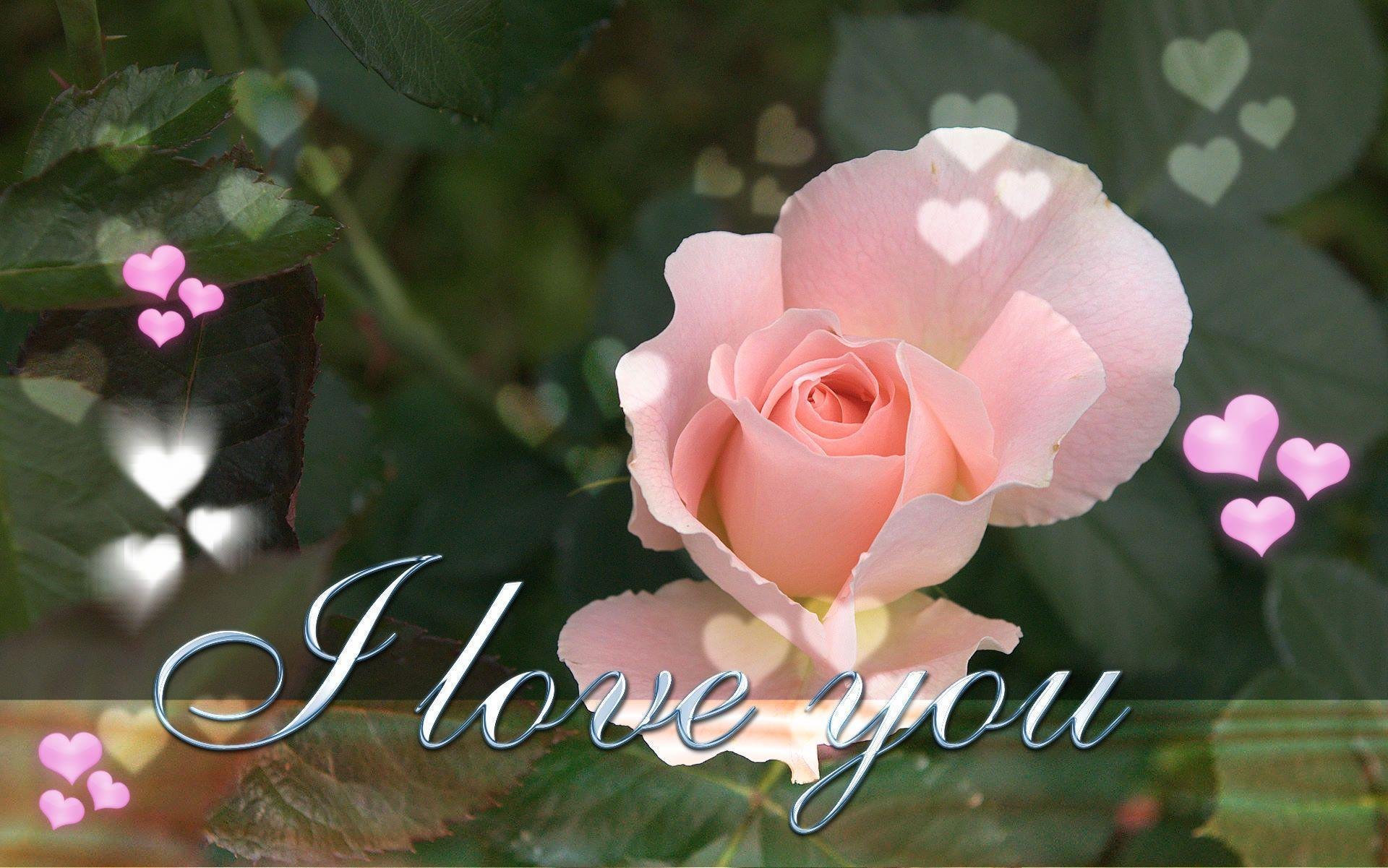 Wallpaper download i love you - I Love You Desktop Wallpaper 34 Wallpapernesia