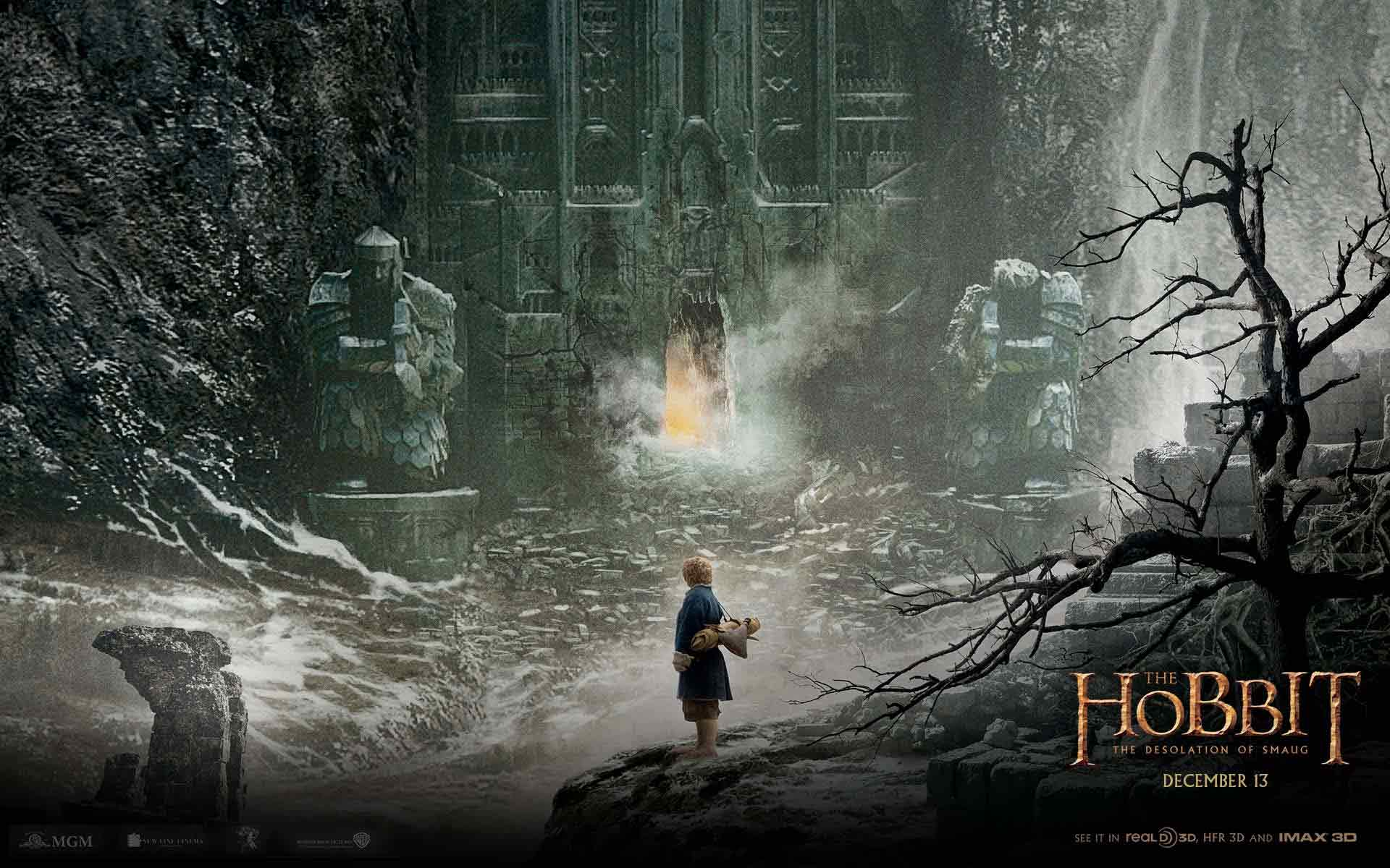 30+ The Hobbit: Desolation of Smaug Wallpapers & Backgrounds ...