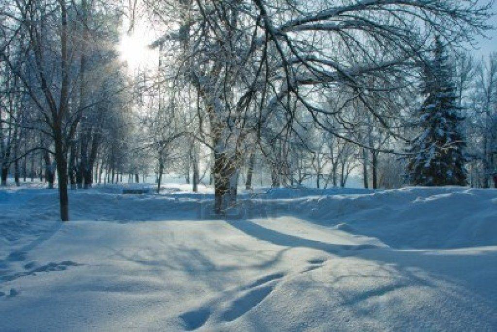 awesome nature wallpapers winter - photo #30