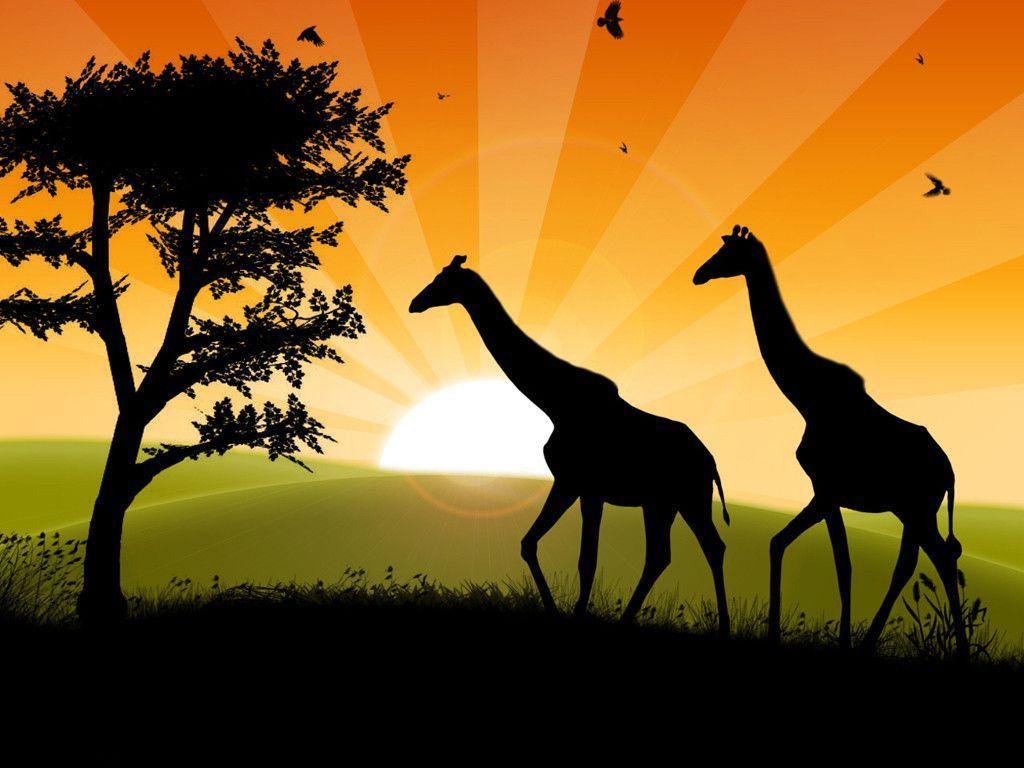 safari cartoon wallpaper - photo #28