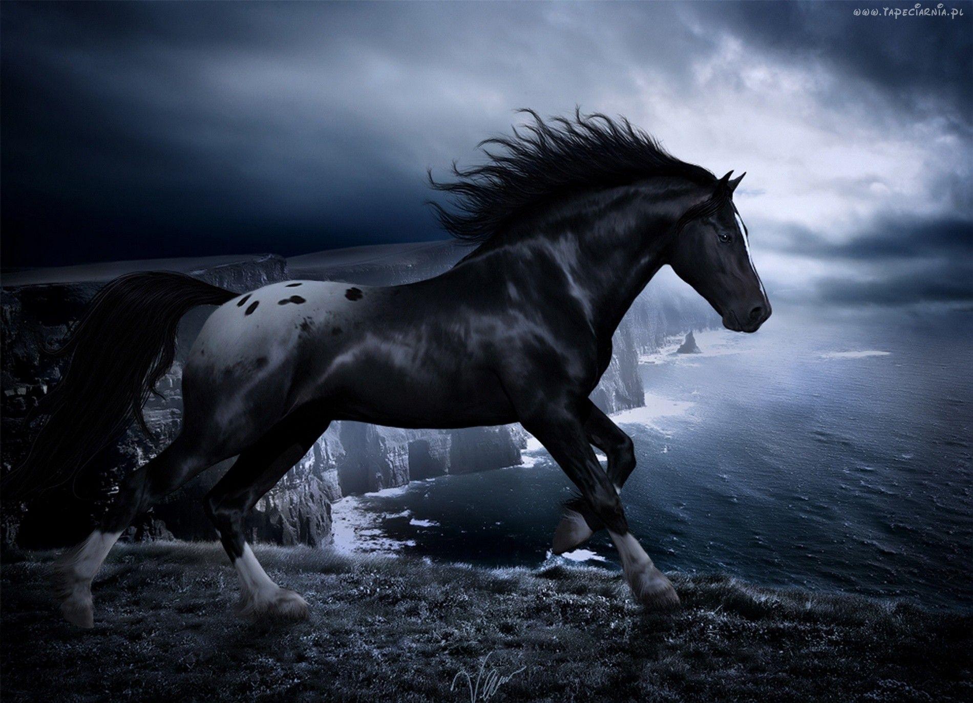 Dark Horse Wallpapers - Wallpaper Cave