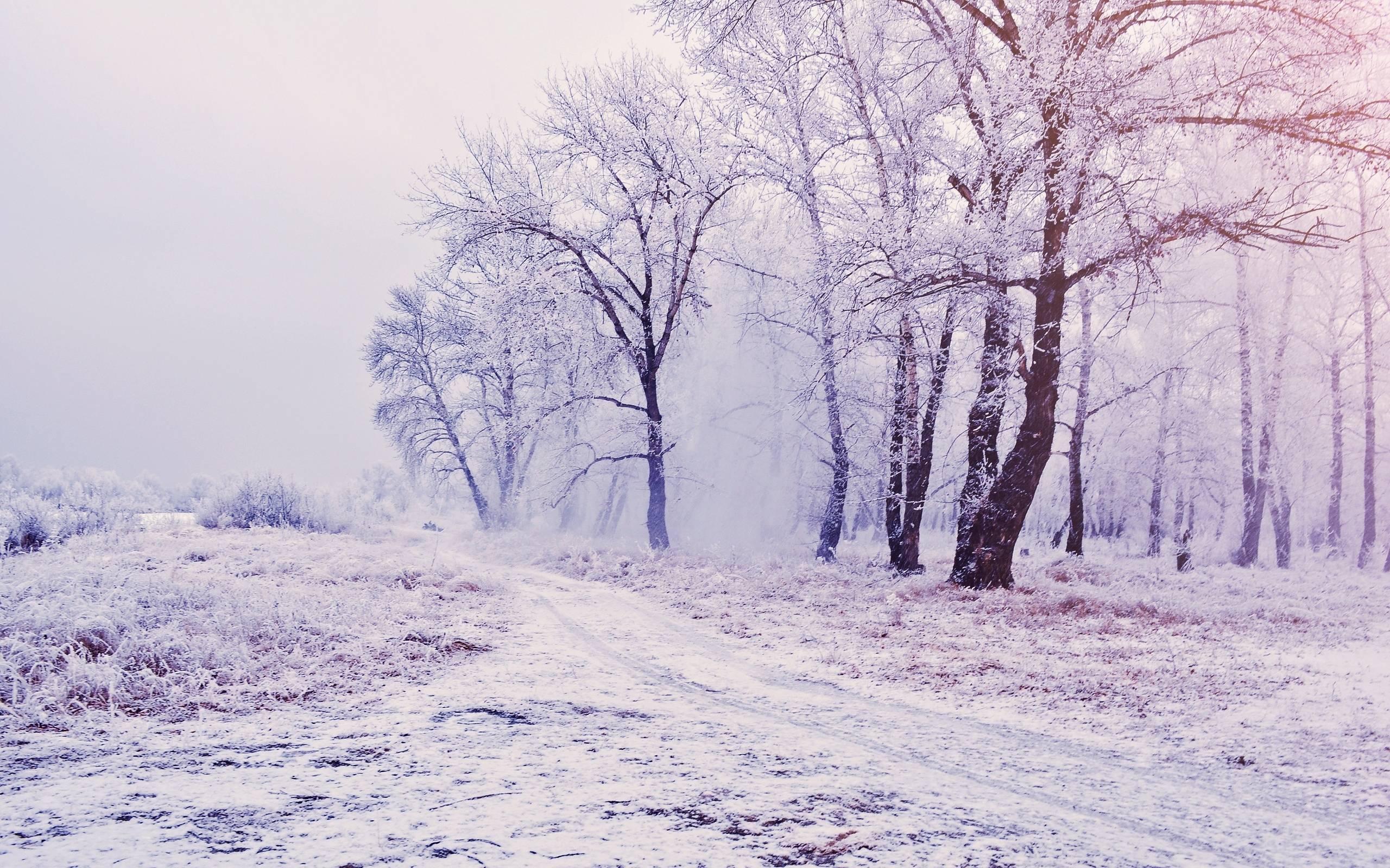 ilona wallpapers beautiful snowy - photo #10