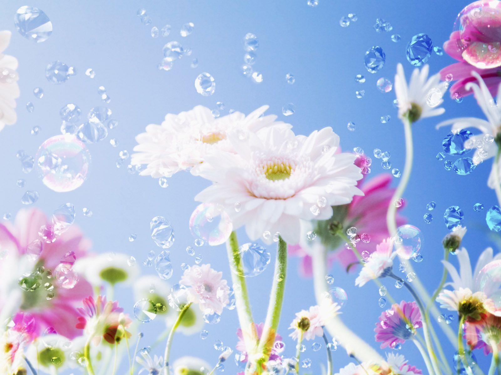 Beautiful flowers wallpapers wallpaper cave wallpapers for beautiful flowers wallpaper desktop izmirmasajfo