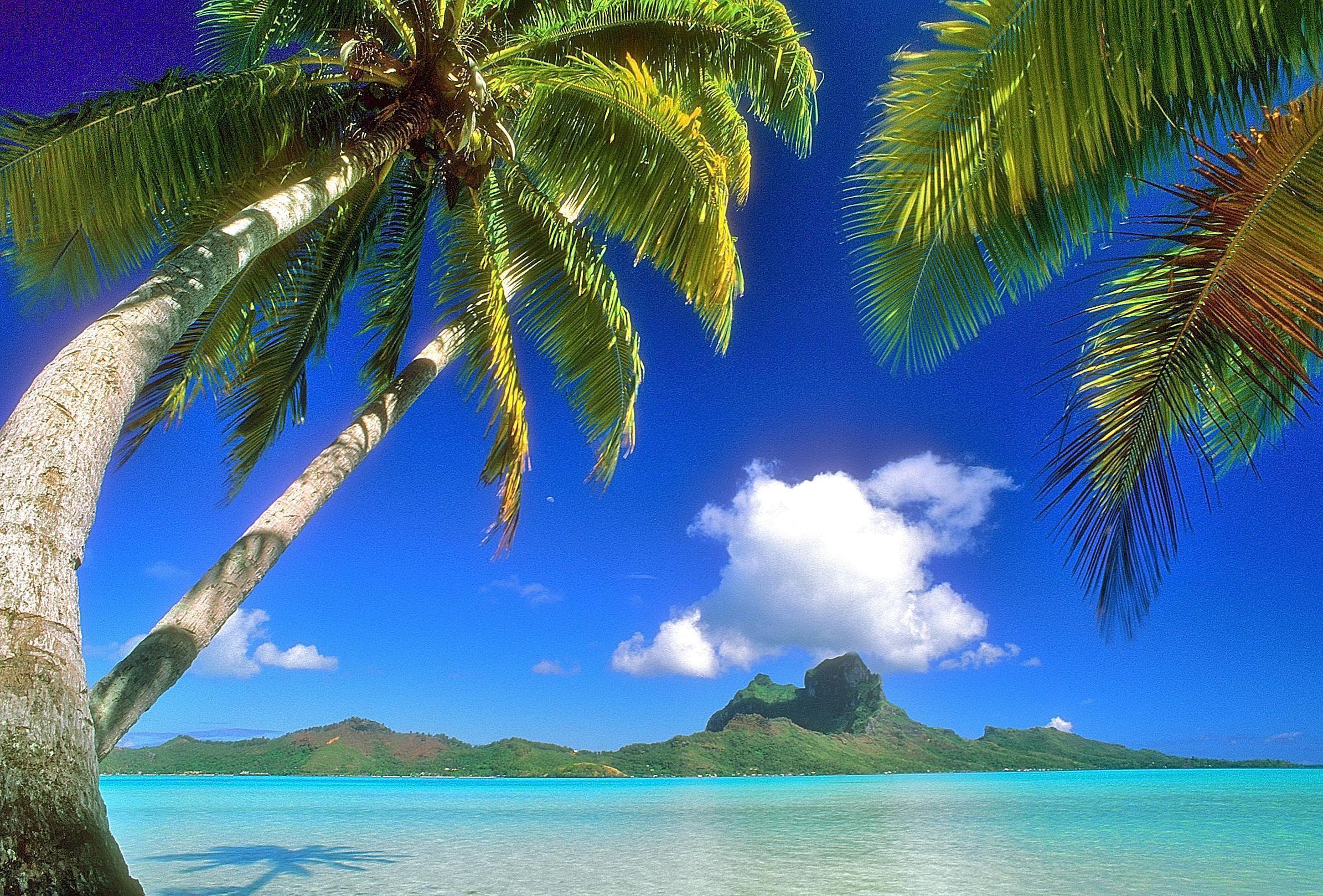 hawaiian backgrounds image wallpaper cave