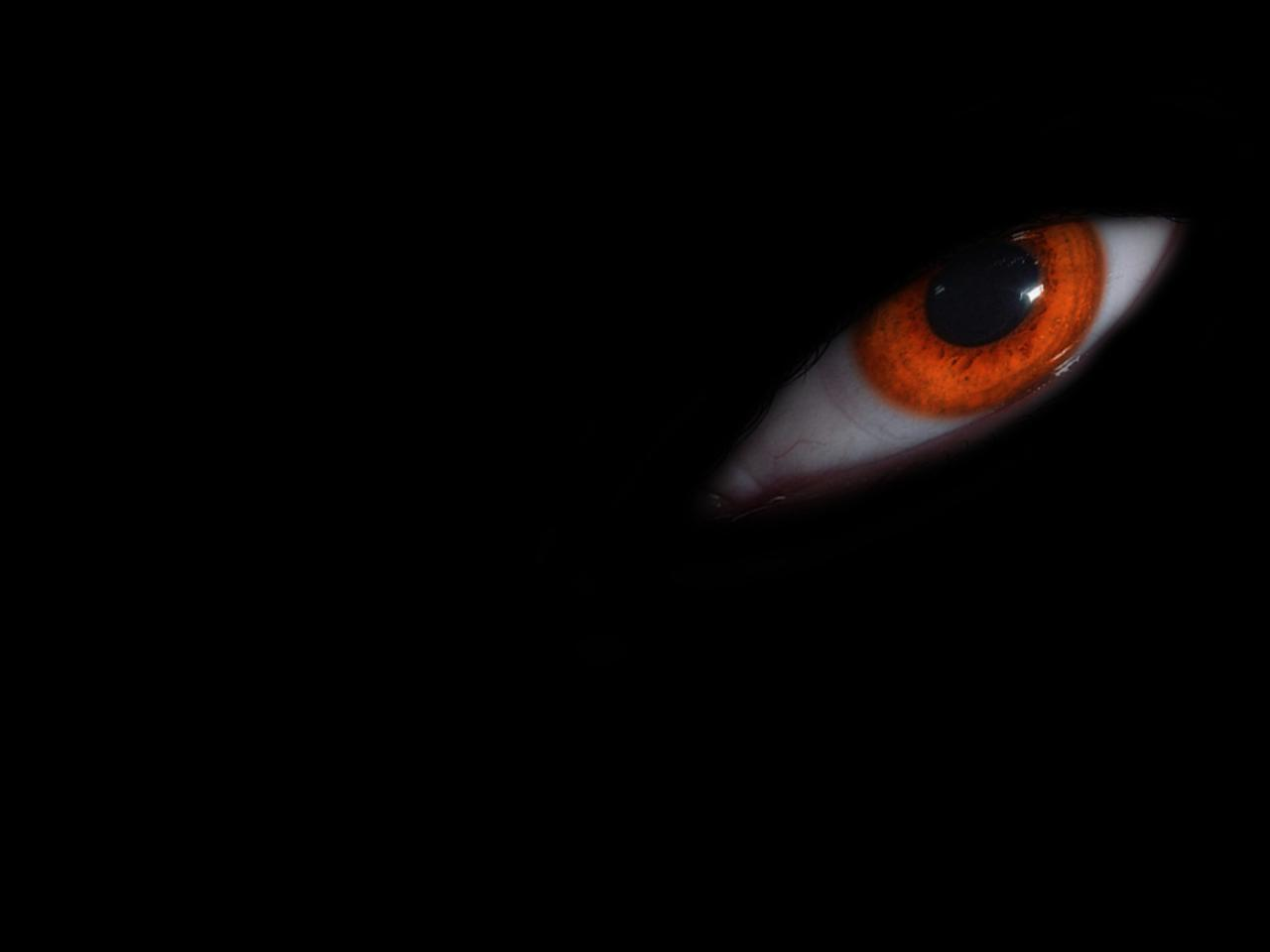 En la oscuridad 184 - 2 part 6