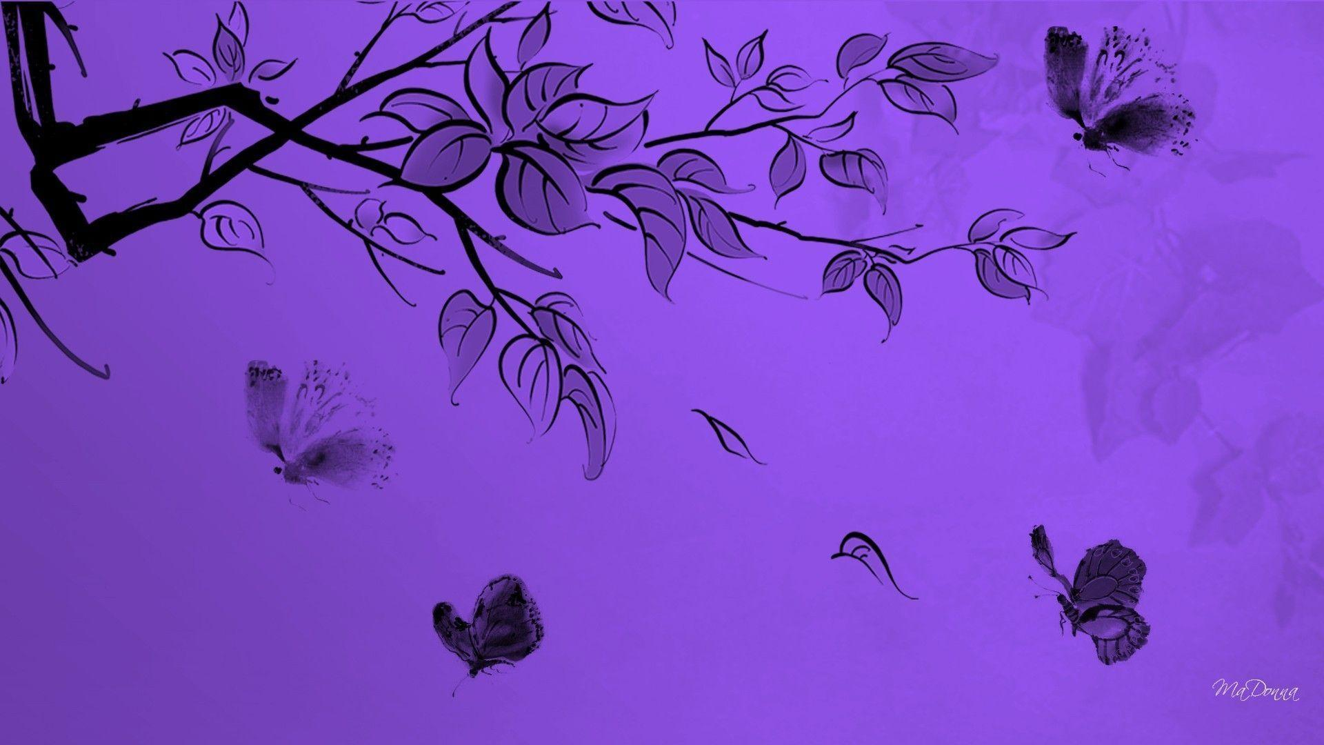 purple butterfly wallpapers wallpaper cave