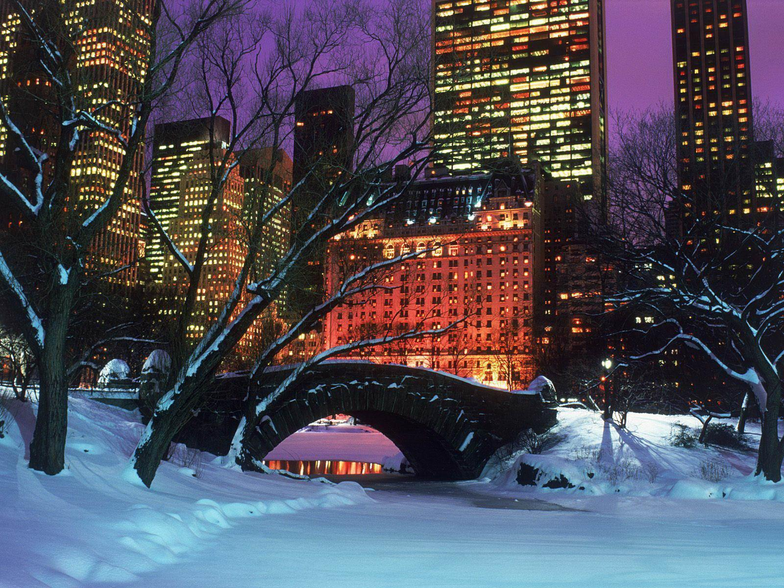 Central park in winter landscape New York city free desktop
