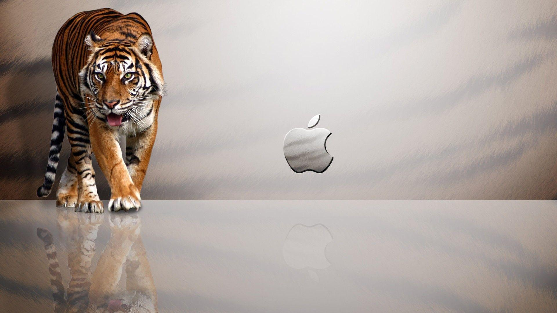 Apple Mac OS X Tiger Computer Wallpapers