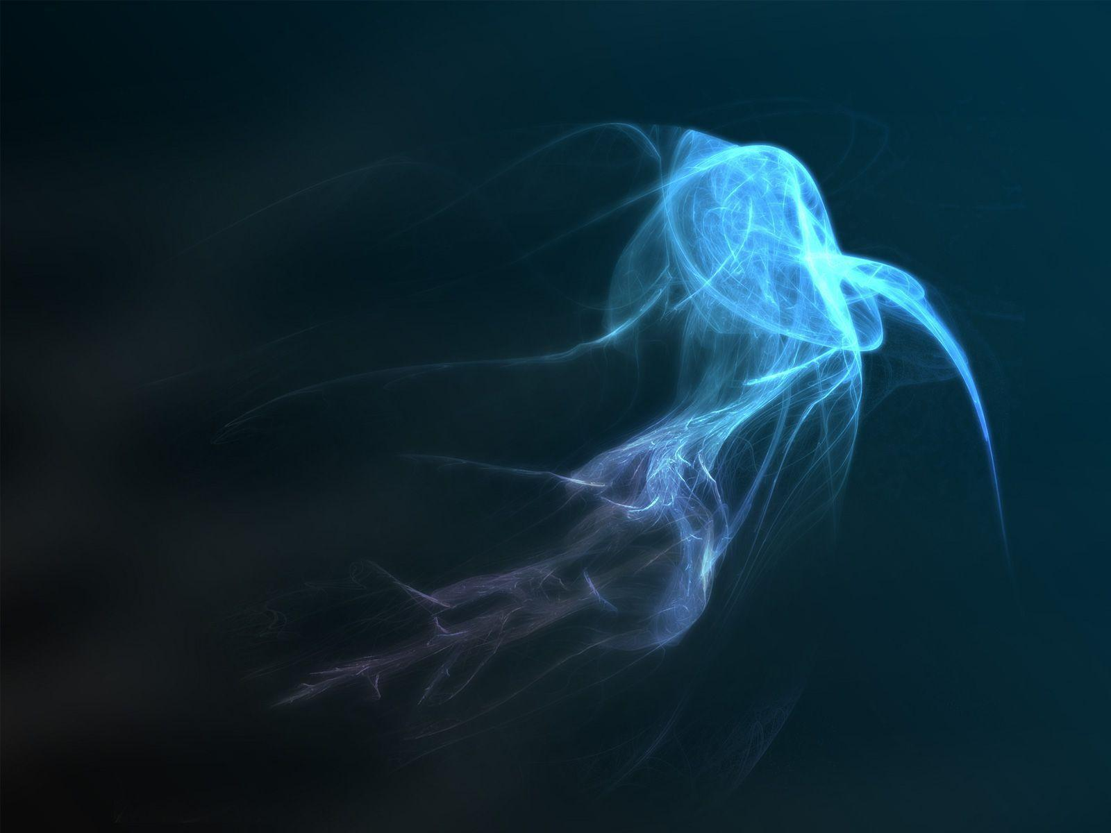 full hd wallpaper jellyfish - photo #37