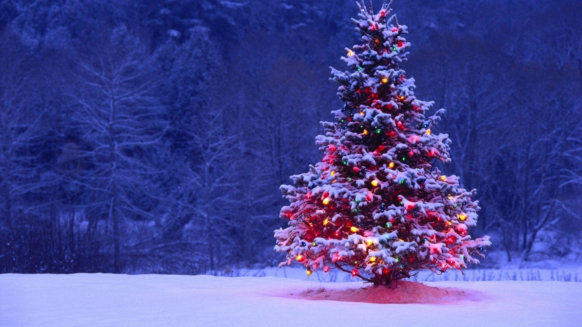 1920x1080 Christmas Wallpapers Wallpaper Cave